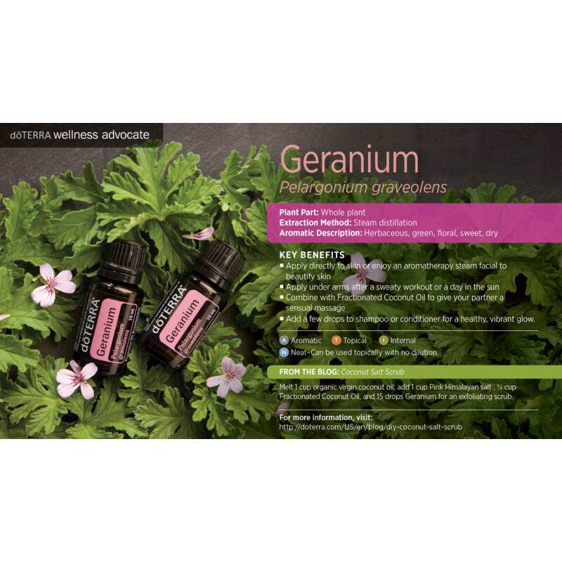 doterra_geranium_muskatli